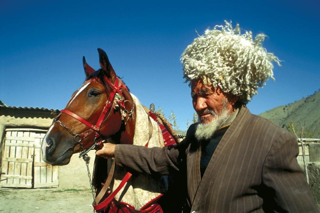 Ahal Teke Horse, Turkmenistan (5)