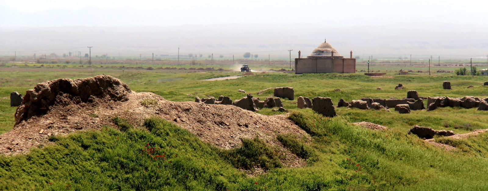 Nature, Turkmenistan (5)